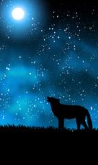 Wolf-karte