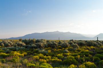 High Desert Sangre De Cristo Mountains NM USA
