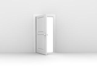 Doors concept