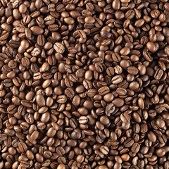 fresh roasted coffee background
