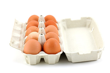 Ten chicken eggs in the box on white background