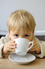 Little boy drinking from a cup tea in a cafe