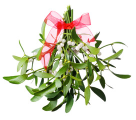 Hanging green mistletoe with a red bow