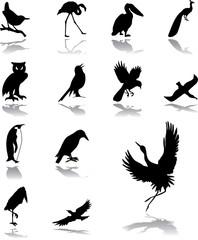 Set icons - 194. Birds