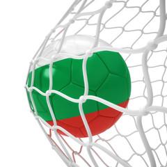 Bulgarian soccer ball inside the net
