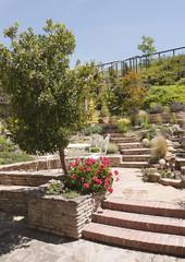 Patio steps in hillside garden