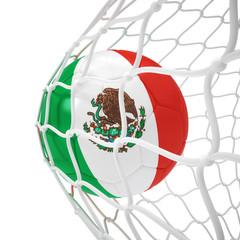 Mexican soccer ball inside the net