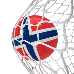 Norwegian soccer ball inside the net