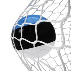 Estonian soccer ball inside the net