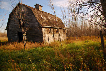 Old Brown Barn in Sunlight