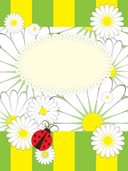 Spoed Fotobehang Lieveheersbeestjes Greeting card with summer motives pattern