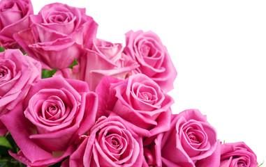 Pink roses corner