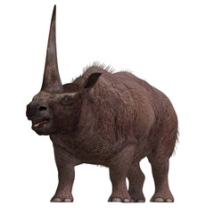 Dinosaur Elasmotherium. .3D rendering with clipping path and