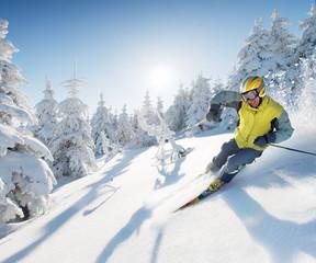 skier in mountains - european style
