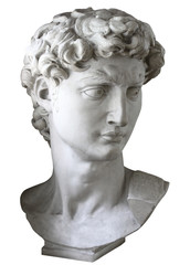 A copy of the head of statue David.