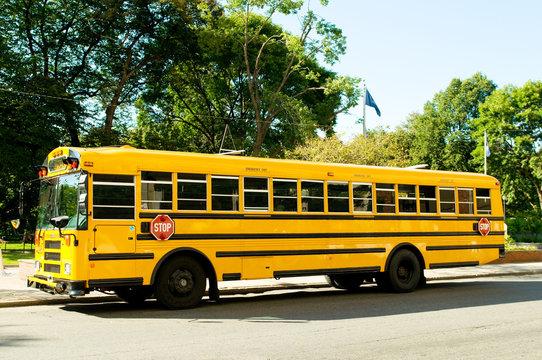Yellow school bus on the street