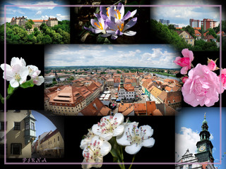 Pirna-Collage