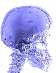 X-ray 3d blue skull