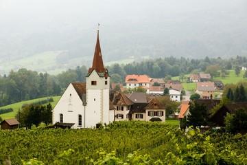 Vineyard and church