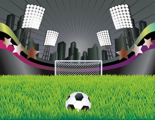 Soccer field with detailed grass and goal.