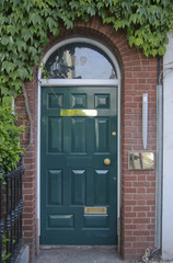 Wooden  entrance door with ivy