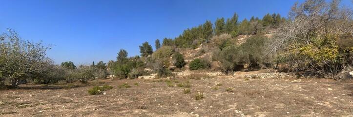 Scenic Mediterranean hills