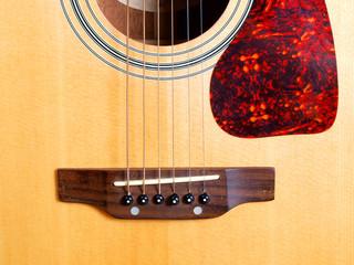 Wall Mural - Guitar string