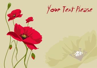 Fotobehang Abstract bloemen Beautiful vector illustration depicting poppies