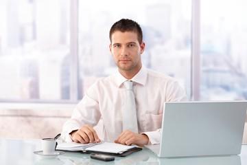 Handsome businessman sitting at desk in office