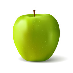 Green apple realistic illustration