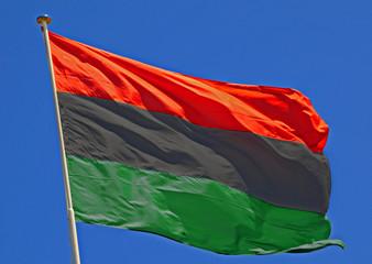 Wall Mural - Libyan Flag