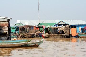 Kambo Life 1