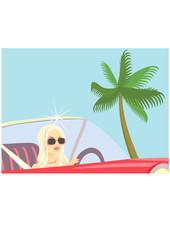 Traveling  Celebrity