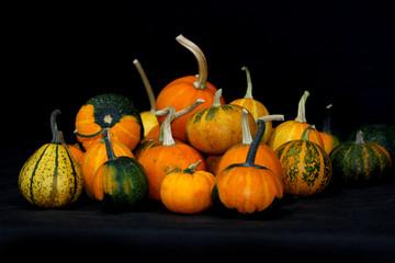 beautiful pumpkins against black background