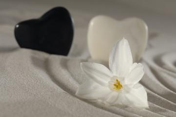Steine als Herz im Sand mit Spuren und Blume