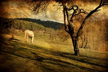 vintage white horse