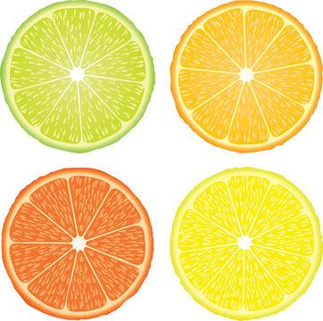 orangelemon