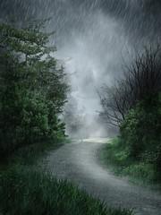 Wiejska droga w deszczu