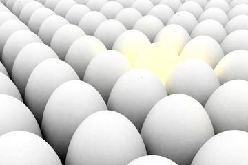 light egg among white eggs