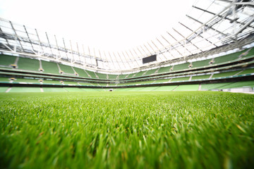 Foto auf Leinwand Stadion green-cut grass in large stadium at summer day