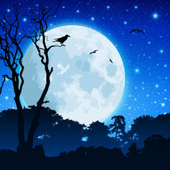 A Forest Landscape with Moon and Night Sky