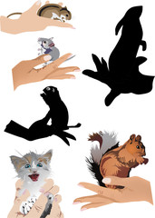 set of human hands with small animals