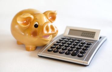 cochon et le calcul