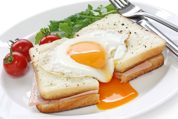 croque madame , french ham and cheese sandwich with fried egg