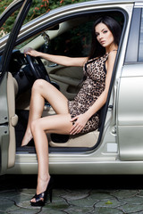 Beautiful woman at the car