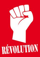 REVOLUTION_Poing