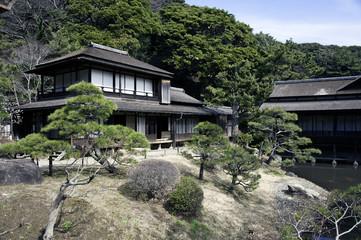 Japanese style house & garden