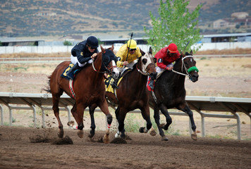 Three jockeys battle on thoroughbreds in the stretch run.