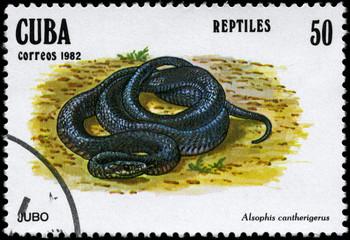 CUBA - CIRCA 1982 Snake