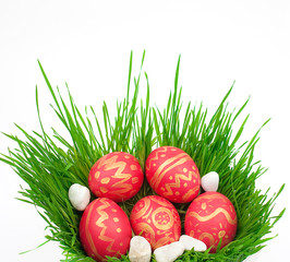 Easter eggs on a green grass